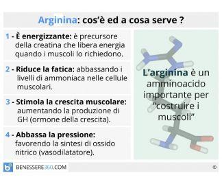 Arginina a cosa serve